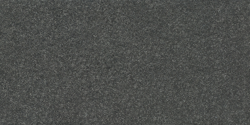 T04福鼎黑